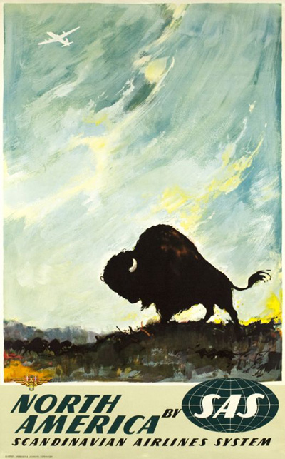 scandinavia-sas-north-america-bison